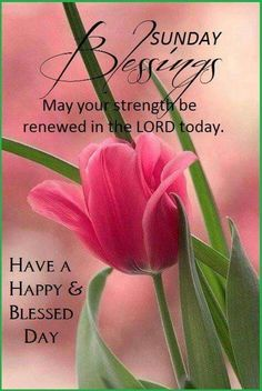 Sunday Blessings (f/ my dear Terr Bear Teresa Paris! )