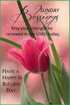 Sunday Blessings (f/ my dear Terr Bear Teresa Paris! )