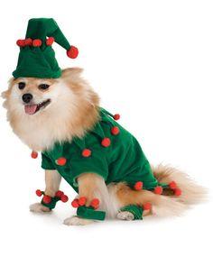 Christmas Elf Pet Costume #Christmas