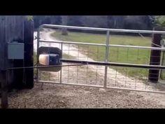 Redneck gate opener - YouTube