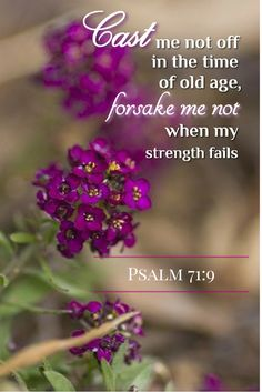 """~ Psalm 71:9 ~ """"We have nothing to fear because the Lord is with us always even to the end of the earth!"""