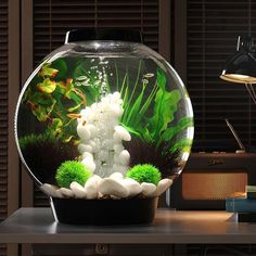 Always wanted an aquarium but thought it would be a hassle to maintain? The BiOrb 30 is the answer! It has a complete filtering system for a healthy fish-worthy environment. <br>  <ul><li>8-gallon lightweight acrylic aquarium</li> <li> Includes a one-of-a-kind 5 stage filtration system to give your fish a stable environment </li> <li> LED light lets you enjoy your aquarium and fish </li> <li> Available in black or silver  &...