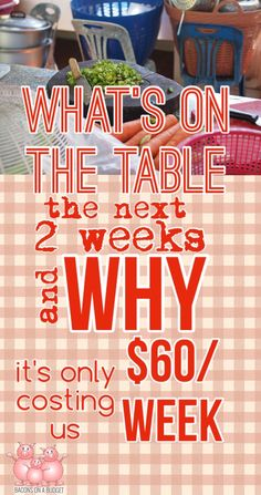 Find out what's on the table the next 2 weeks and why it's costing us only $60/wk.  Meal planning in king!