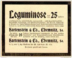 Original-Werbung/ Anzeige 1898 - HARTENSTEIN LEGUMINOSE - CHEMNITZ - ca. 90 x 75…