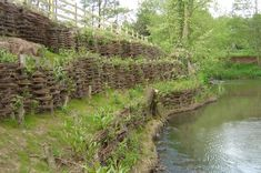 Living willow has been used as a method of controlling riverbank erosion for centuries. Salix employ traditional techniques and more modern approaches based upon the site specific erosion process. Garden Of Eve, Porch Garden, Wattle Fence, Living Willow, Outdoor Ponds, Willow Weaving, Living Fence, Beach Properties, Sloped Garden