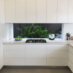 Clever planting combined with a window splashback adds space, light and colour to this #Caesarstone Fresh Concrete kitchen. #kitchen #architecture #stone #design #style #home #interiordesign