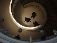 And crawly! And made of bronze. Beetles, Cambridge, Spiral, Creepy, Insects, Bronze, Artist, Artists