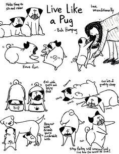 Bah Humpug: Live Like a Pug!