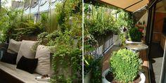 Avant/ Après: un balcon citadin transformé en terrasse verdoyante