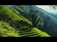 VIDEO: Trekking Tours - Footprint Vietnam Travel
