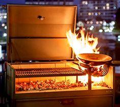 Weber Genesis Grill Weber Genesis Grill, Argentine Grill, Barrel Smoker, Smoked Chicken, Smoked Pork, Offset Smoker, Rub Recipes, Spice Rub, Smoker Cooking