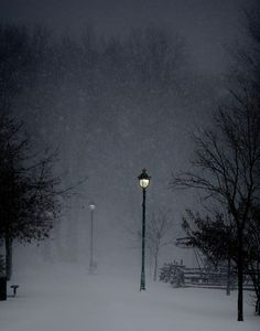 Winter Wonderland ♥ (Explore!) | Flickr - Photo Sharing!