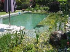 Popular Bildergebnis f r schwimmteich klein SchwimmteichTeicheGartenGarden