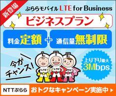 ビジネスプラン 料金定額+通信料無制限 NTTぷらら