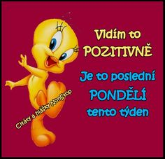Vidím to pozitívne. Je to poslední. Motto, Funny Texts, Jokes, Life, Fotografia, Text Posts, Quotation, Creative, Funny Textposts
