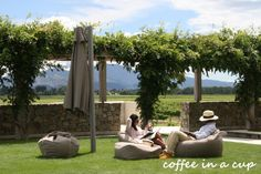 wine tasting at whither hills winery in blenheim, new zealand