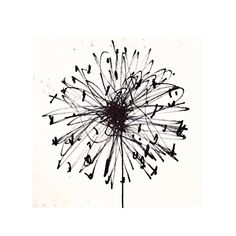 I'm not sure the rain is helping these little dandelion clocks along, but they're still popping up everywhere. Each one is so intricate, a real architectural masterpiece of nature. Love them. #artscarves#inspiration#designer#textiles#textileprints#contemporaryart#artist#artoftheday#inspiredbynature#art#graphic#creative#mixedmedia#textiles#textileart#interiorandhome#wallart#cre8tivestorm#contemporaryart#originalart#markmaking#CCdirectory #drawing#sketchbook#draw#artsy#doodle#ink#sketching Abstract Lines, Abstract Art, Dandelion Clock, Scribble Art, Drawing Artist, Doodle Art, Textile Art, Line Art, Art Drawings