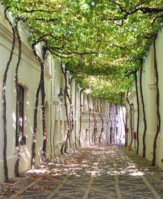 Jerez de la Frontera #Andalusia #Spain #travel