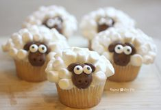 DIY Easy Sheep Cupcakes