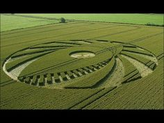 Secret UFO Files: Crop Circle Controversy - REAL TRUTH ABOUT CROP CIRCLES HD - YouTube