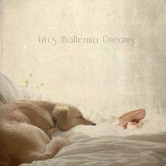 ViVi's Ballerina Dreams