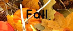 Fall Theme Preschool Activities for a fun-filled autumn with preschoolers. Playful fall activities and printables about apples, leaves, trees, and pumpkins. Preschool Curriculum Free, Preschool Schedule, Kindergarten Themes, Preschool Lesson Plans, Preschool Themes, Pre K Activities, Autumn Activities, Infant Activities, Learning Activities