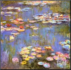 Water Lilies, 1916 Mounted Print by Claude Monet at Art.co.uk