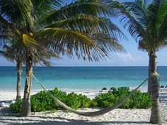 My favorite place in the world---Hammock on the Beach at the Hotel Grand Palladium Kantenah Resort & Spa on the Riviera Maya, Mexico