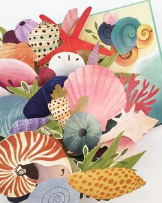 Sneak peek of an ongoing book project SHELLS: A Pop-Up Book of Wonder illustration by @lindsaydale.art . . . . . #popup #popupbook #summer #shells #seashells #seaweed #summershells #colorful #paperengineering #paperart #papercut #prototype #wip #sneakpeek #book #literature #childrensbook #naturesdesign #planetearth #colorfulshells #paper #paperdesign #design #paperlove #handmade #beach #illustration #seasons #shellsapopupbookofwonder #coming2019 Pop Up, Beach Illustration, Paper Engineering, Book Projects, Seashells, Seaweed, Paper Design, Paper Cutting, Childrens Books