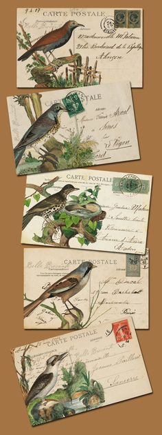 I love it when people incorporate birds into their mail art Images Vintage, Vintage Postcards, Post Cards Vintage, Fabric Postcards, Vintage Birds, Postcard Art, Postcard Design, Mail Art Envelopes, Addressing Envelopes