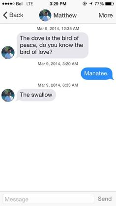 This guy who ruined birds for everyone. | 18 Tinder Messages That Went From 0 To 100, Real Quick