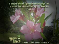 Believe in a better tomorrow #sustainable #future #TerraLibreCity #QOTD  - http://terralibrecity.com/?attachment_id=1865