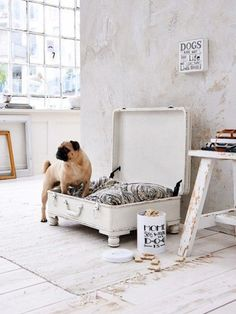 20 Modern Indoor Dog Houses For Small Dogs - dog kennel diy Diy Casa, Dog Furniture, Dog Rooms, Diy Stuffed Animals, Dog Houses, Pet Accessories, Dog Bed, Diy Home Decor, New Homes