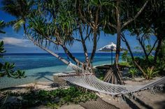 Hammocks are located alongside each Wakatobi bungalow