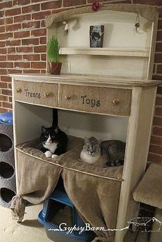 Awww, they made a cat condo from an old dresser!   <3  (We are so in ♥ with this right now!)  Details here: http://hmt.lk/VMQHTL    Shared by Gypsy Barn