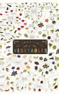 Infographic: Over 400 Vegetables On One Incredibly Healthy Poster | Co.Design | business + design