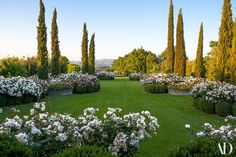 Back in porano, more Penelope roses spill over boxwood hedges | archdigest.com