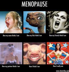 6c2e784f50841d564fea23991c580aea menopause humor funny shit theretroinc on etsy humor, menopause and menopause humor