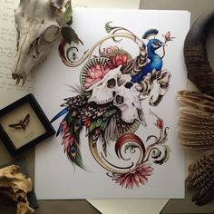 Absolutely stunning peacock and deer skull tattoo sketch drawing