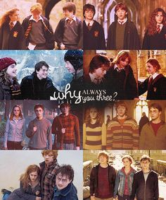Why is it always you three? - Harry Potter, Ron Weasley & Hermione Granger Harry Potter Hermione, Harry Potter Film, Ron Weasley, Harry Potter Quotes, Harry Potter Love, Harry Potter Universal, Harry Potter World, Hermione Granger, James Potter