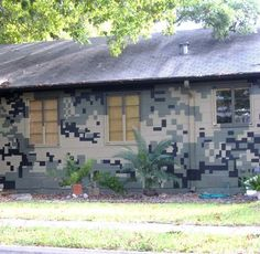 Look: A Camouflaged House! — Austin