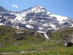 parco gran paradiso flora e fauna - Cerca con Google #italian #alps #aostavalley #mountains #travel #holiday #nationalparkgranparadiso #granparadiso #nationalpark  #