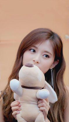Tzuyu and her dog plush Nayeon, Kpop Girl Groups, Kpop Girls, Korean Girl, Asian Girl, Cute Girls, Cool Girl, Tzuyu Wallpaper, Girl Wallpaper