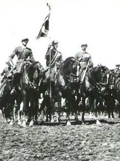 Polish Cavalry, pin by Paolo Marzioli
