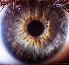 The fantastic macro photos of the human eye by Suren Manvelyan.Incredible close-up photos of Your beautiful eyes Pretty Eyes, Cool Eyes, Beautiful Eyes, Eye Close Up, Extreme Close Up, Photos Of Eyes, Close Up Photos, Gif Kunst, Photo Oeil