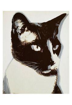 Andy Warhol. Cat, c. 1976.