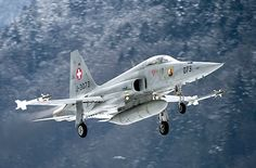 An Northrop F-5E Tiger II of the Swiss Air Force comes in for a landing.