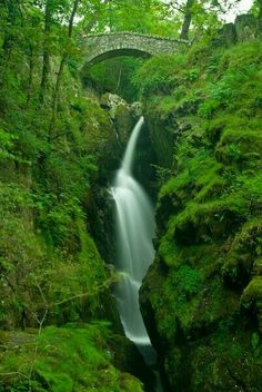 Force falls in England