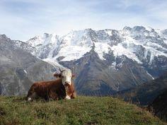 #Interlaken, Switzerland