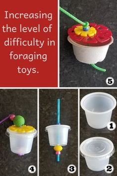 This is just one example of how you can steadily Increase the level of difficulty. In this example, you could start from the very beginning and use an uncovered cup. Make sure your parrot is watching when you introduce the cup and put a treat in it. Diy Budgie Toys, Diy Parrot Toys, Cockatiel Toys, Diy Bird Toys, Budgies, Bird Barn, Barn Owls, Parakeet Bird, Monk Parakeet